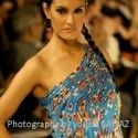 Lahore Fashion Week 2010 (Feb 2010) - (11)