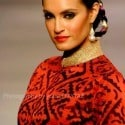 Lahore Fashion Week 2010 (Feb 2010) - (67)